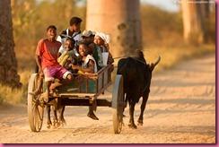 Madagascar persone 4