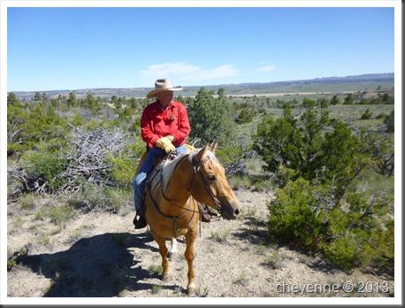 montana 2013 trail 561