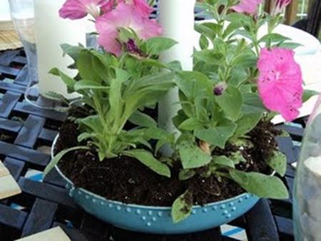 Bundt pan flower pot