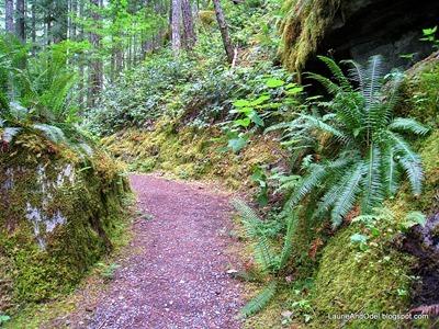 Gorge Chasm Trail