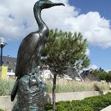Le cormoran de Concarneau