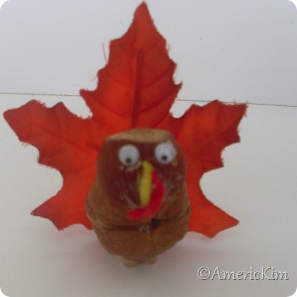Nutty Turkey