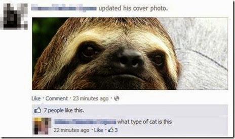 stupid-facebook-posts-003
