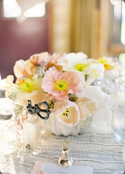 006670-R1-E024 flower wild jose vills