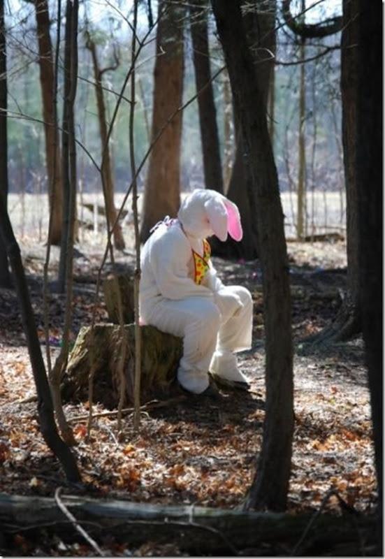easter-awkward-bunny-20