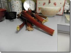 rhubarb bread 02