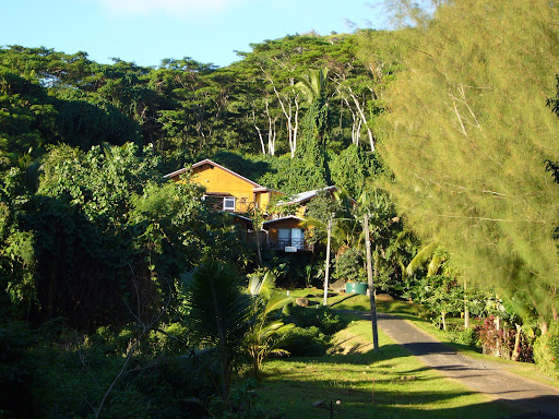 Our guest house (the Rarotonga Backpackers Hillside Bungalows)
