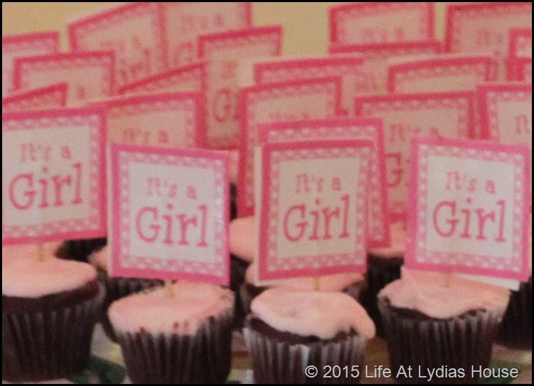 t's a girl cupcakes