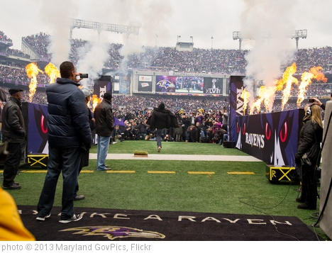 'Baltimore Raven's Homecoming Celebration' photo (c) 2013, Maryland GovPics - license: http://creativecommons.org/licenses/by/2.0/