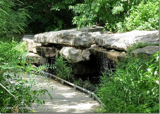 Waterfall_BotanicalGardens