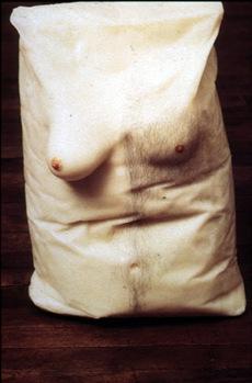 gober torso