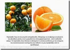 τα φρούτα του φθινοπώρου (12)