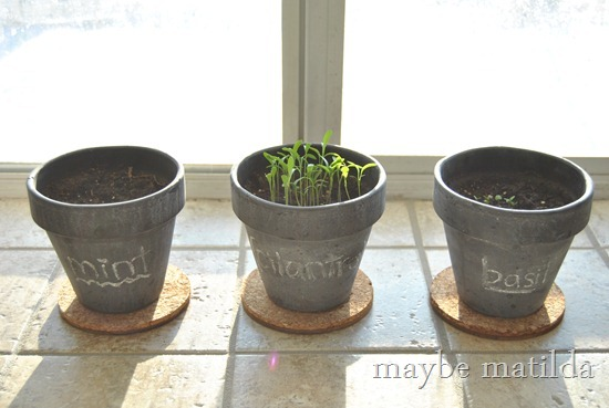 DIY Chalkboard Herb Pots
