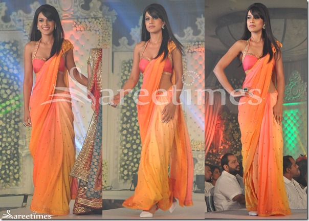 Neeta_Lulla_Orange_Embroidery_Saree