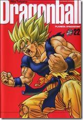 P00022 - Akira Toriyama - Dragon B