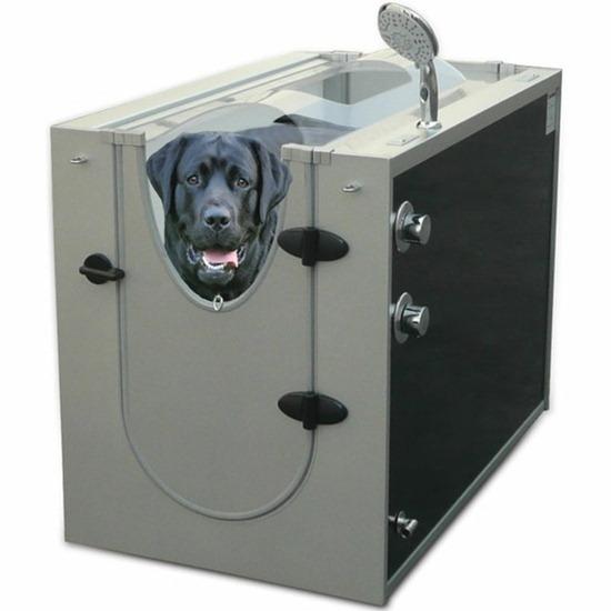 Máquina lavar cachorro