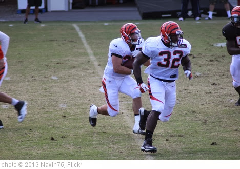 'John Conner leading Rex Burkhead' photo (c) 2013, Navin75 - license: http://creativecommons.org/licenses/by-sa/2.0/