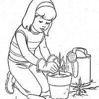 niña plantando.jpg