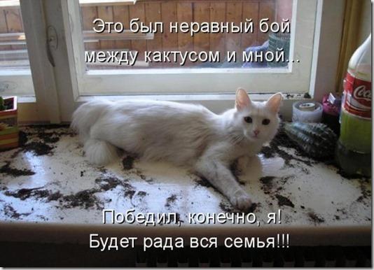 1246349716_jivotnie_7