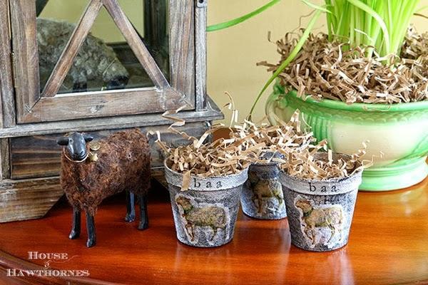 Sping Zinc Peat Pots 5349