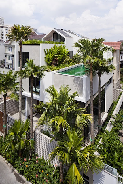 Nhà phố tuyệt đẹp có bể bơi trên mái