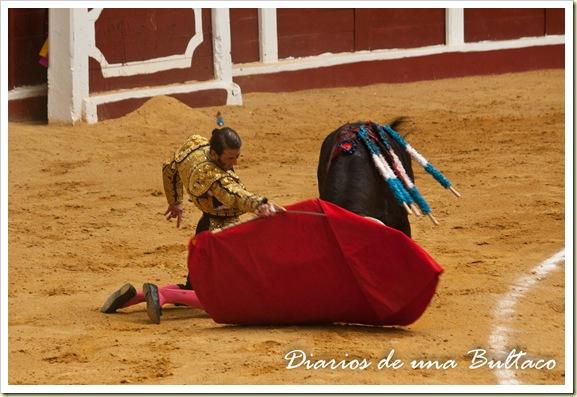 Toros_León-16