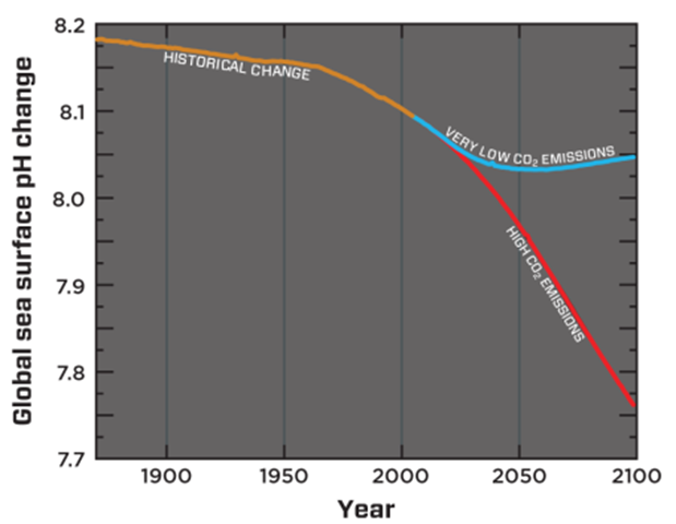 Global sea surface pH change, historical and projected to the year 2100. Graphic: Bopp et al., 2013 / IGBP