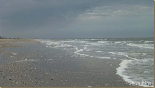 Edisto Beach State Park_019