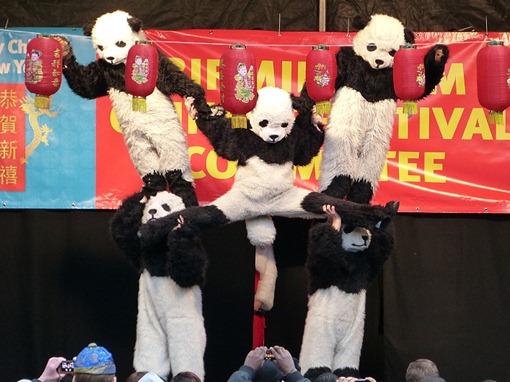 Панды Китайский Новый год