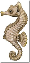 peces clipart blogcolorear (9)