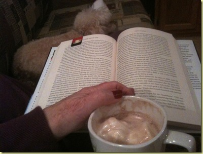 sassi book and cocoa