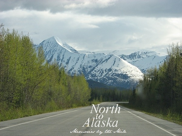 View of Richardson highway[1]