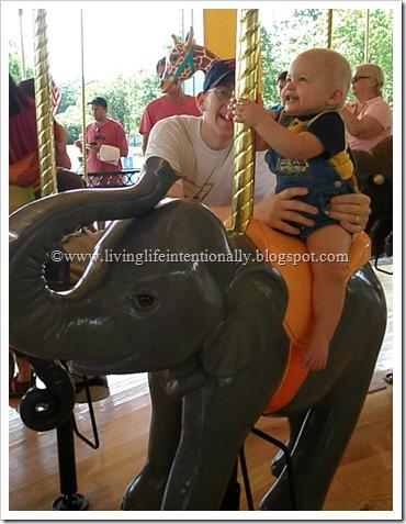 Elephant fun at the zoo