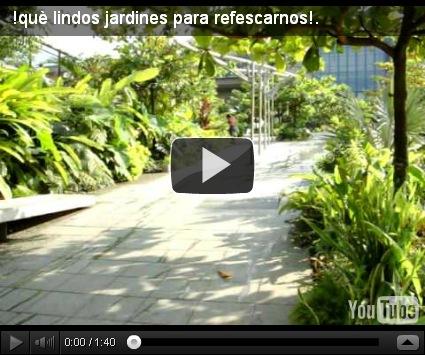 Decoraci n de jardines en monterrey dise o y decoracion for Piedras para jardin en monterrey