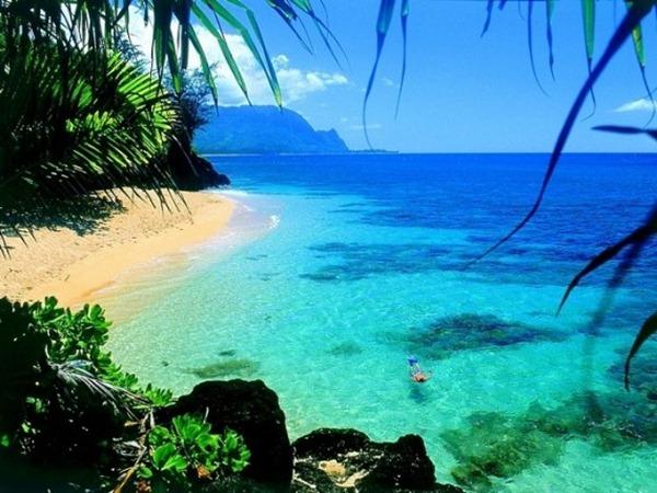 صور هاواي1