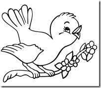 pájaro-para-colorear