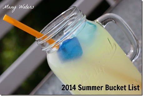 Many Waters 2014 Summer Bucket List