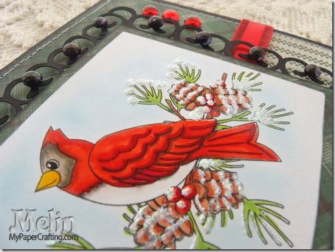 cardinal closeup-450