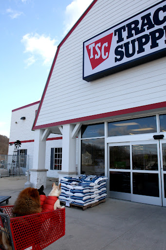 I just love going to the Tractor Supply Company.  This is a one-stop shopping destination for farm pups like us!