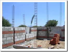 Walls going up, Tasha 011