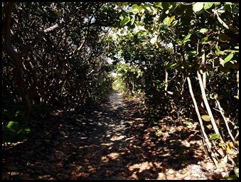 5b2 - Tour - First Beach Access - Sea Grape access tunnel