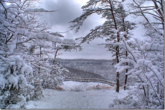 snow-scenery-douglas-barnett