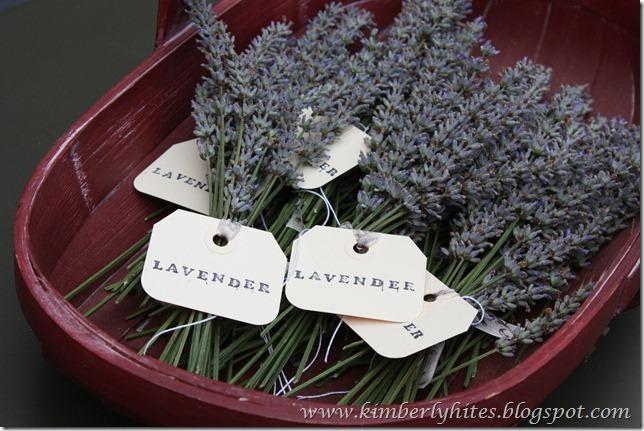 lavender_idea