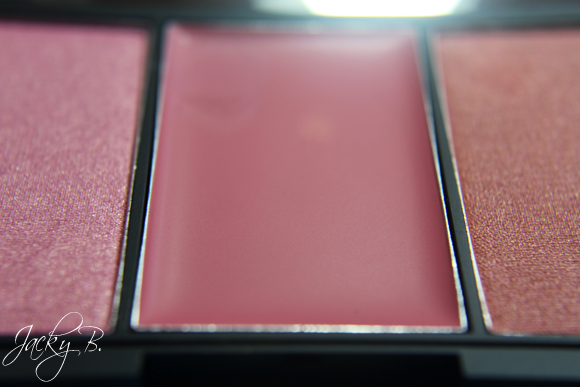 sleek-pink-lemonade-blush-by-3-blush-palette5