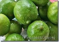 lemon lime punch