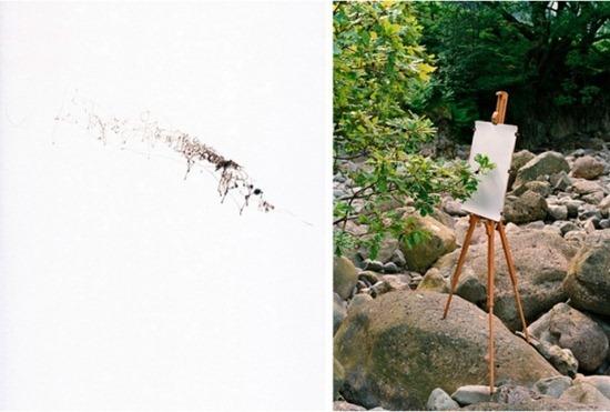 A arte das árvores (1)