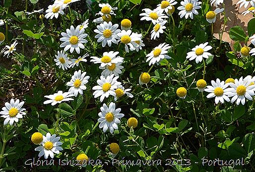 Glória Ishizaka - Primavera 2013 - 24