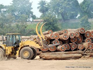 Un engin prêt à transporter des grumes provenant de la forêt équatoriale en RD Congo pour une exportation. Radio Okapi / Ph. Bompengo