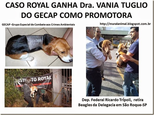 CASO ROYAL GANHA Dra
