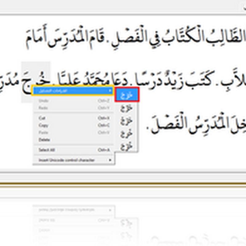 Mishkal, Software Pemberi Harakat/Syakal